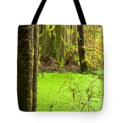 Rainforest Wetland Wildernis Of West Coast Bc Tote Bag