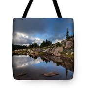 Rainier Spray Park Reflection Tote Bag