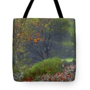 Rainy Afternoon Tote Bag