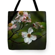 Rainy Day Dogwood Tote Bag