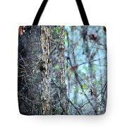 Rainy Day In The Forest Tote Bag