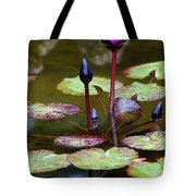 Rainy Day Water Lily Reflections I Tote Bag