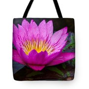 Rainy Day Water Lily Reflections II Tote Bag
