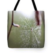 Rainy Day Web Tote Bag