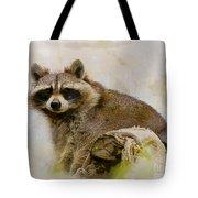 Rakish Raccoon  Tote Bag