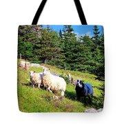 Ram And Ewes Tote Bag