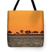 Ram Island Tote Bag