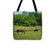 Ranch Daisies Tote Bag