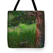 Ranch Kids' Swing Tote Bag