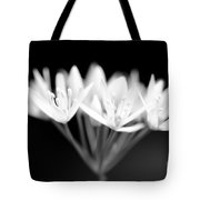 Ransome Photo 1 Tote Bag