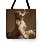 Rape Of Sabine Women Tote Bag