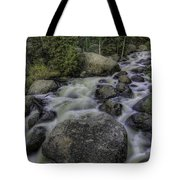 Rapid Change Tote Bag