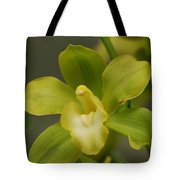 Rare Green Orchid Tote Bag