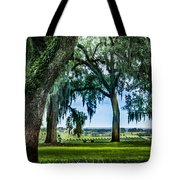 Rare View From Above Tote Bag