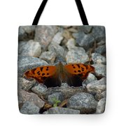 Rarely-sighted Butterfly Species Tote Bag