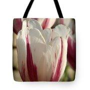 Raspberry Vanilla Tulip Tote Bag