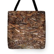 Rattle Snake Round-up Tote Bag