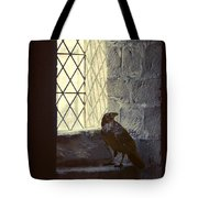 Raven By Window Tote Bag
