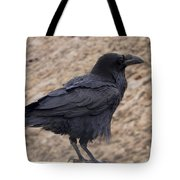 Raven Perched On A Ledge Tote Bag