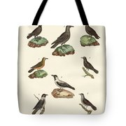 Ravens Crows And Daws Tote Bag