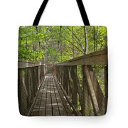 Ravine Gardens - Florida's Hidden Treasure Tote Bag by Christine Till