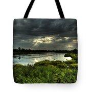 Lake Worth Sunlight Tote Bag