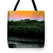 Rays Of Days Tote Bag