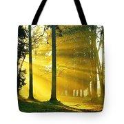 Rays Of Sun Tote Bag
