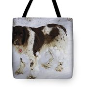 Razzle With Snowballs Tote Bag