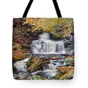Rb Ricketts Falls Tote Bag