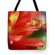 Reach Abstraction Limited Edition Bodecoarts Tote Bag