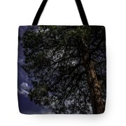 Reach The Sky Tote Bag