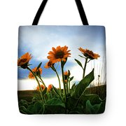 Reach To The Heavens Tote Bag