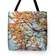 Reaching Autumn Tote Bag