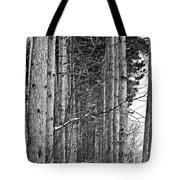 Reaching Pines Tote Bag