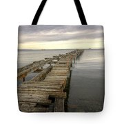 Reaching To The Horizon Tote Bag