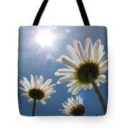 Reaching Up To Sol Tote Bag