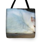 Ready For A Nap Tote Bag