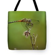 Ready For Lift-off  Tote Bag