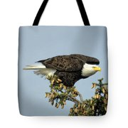 Ready For Takeoff Tote Bag