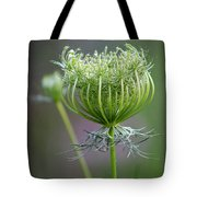 Ready To Burst Tote Bag