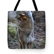 Ready To Howl Tote Bag