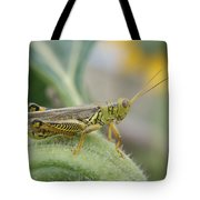 Ready To Jump...   # Tote Bag