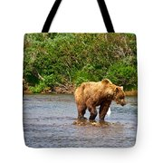 Ready To Pounce On A Salmon  In The Moraine River In Katmai National Preserve-ak Tote Bag