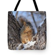 Ready To Rumble Tote Bag