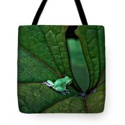 Really In The Groove  Tote Bag