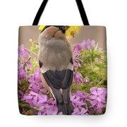 Rear View Of Female Bullfinch Standing Tote Bag
