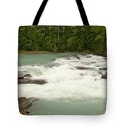 Rearguard Falls Of The Fraser River Tote Bag