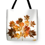 Reconstructed Full Moon Maple Tote Bag