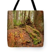 Recycling In The Cheakamus Rainforest Tote Bag